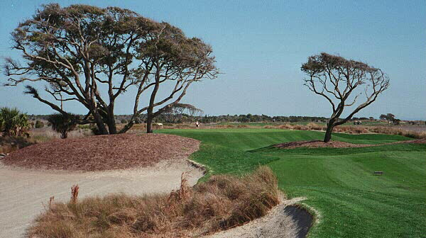 The east coast of the United States hasnt seen a site as good as The Ocean Course at Kiawah since William Fynn re-designed Shinnecock Hills in 1930.