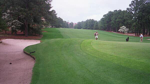 Many of the golfers in the 2001 U.S. Womens Open landed into the upslope on holes like the 2nd at Pine Needles. The resulting fairway wood to this green often met with a bogey.