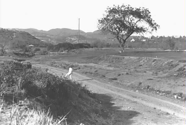 The barranca on the first hole at Riviera, circa 1927.