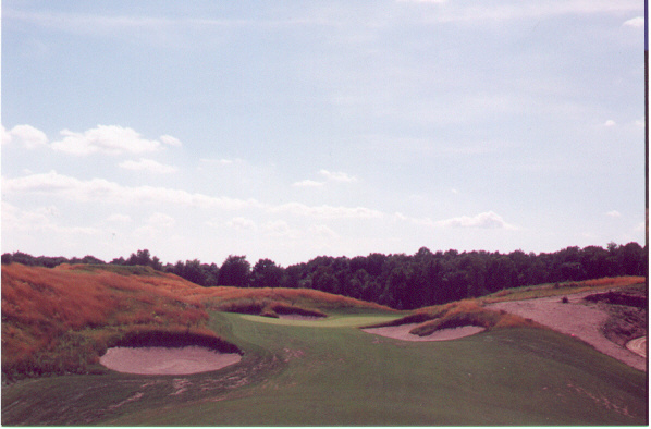 Out of the woods: The approach to the 18th.  The 1st tee is to the left.