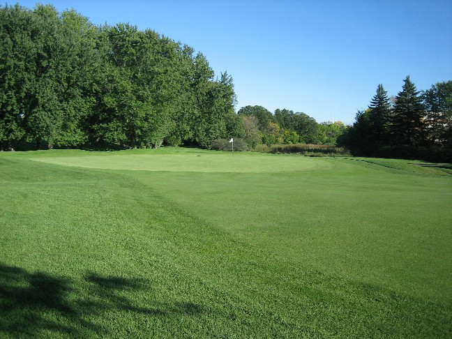 The appealing eighth green from the left.