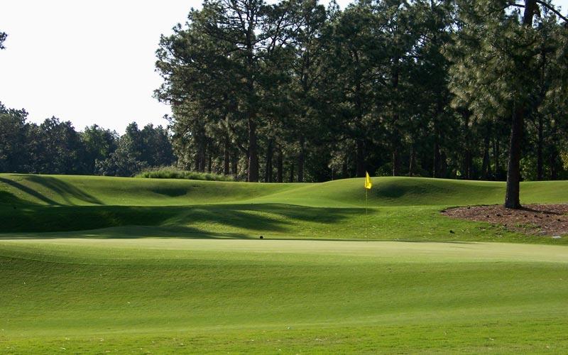 Pine Needles, Golf in Pinehurst, Donald Ross, Kelly Miller