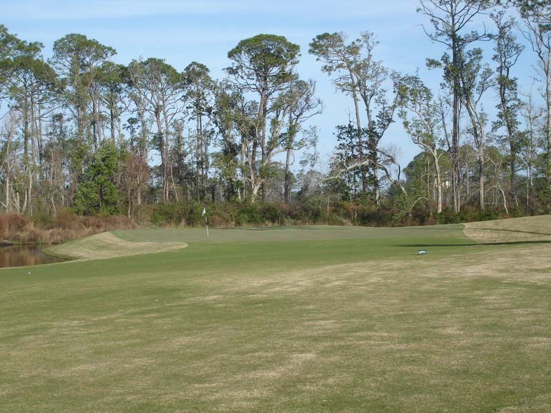 Approach to the thirteenth green