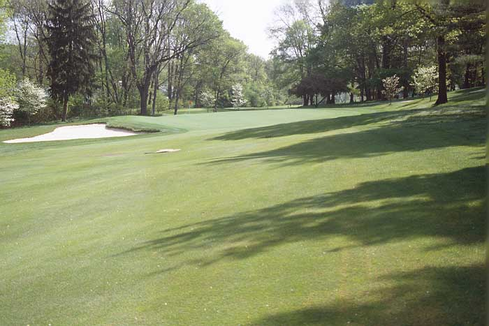 Beautiful green site with the fairway sloped right to left all the way to the green.