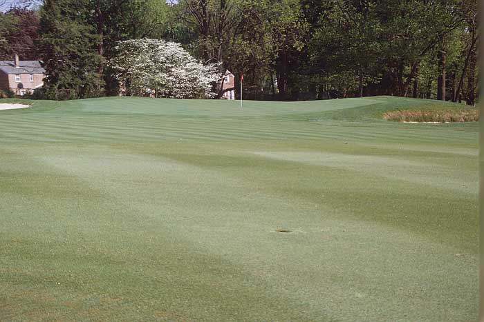 There are many difficult pin positions on this highly contoured green. To get near this pin position, the ideal shot must land short and on the far left side of the green.