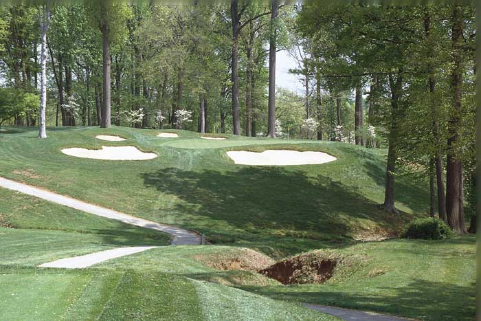 Amongst the bunkers and the trees is a green that welcomes accuracy with the short irons.