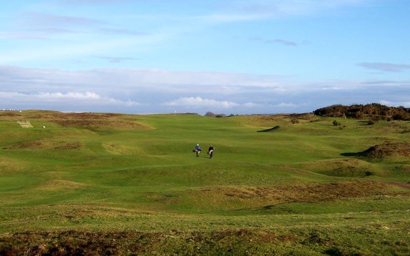 The pleasures of winter golf.