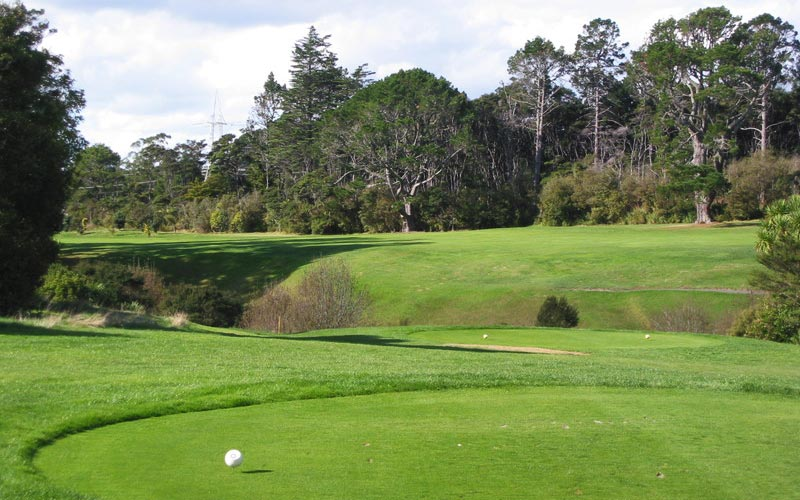 The fifteenth hole - note the diagonally situated ravine to be cleared with the drive.