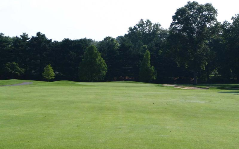 A shot of the fifteenth hole before the renovation.