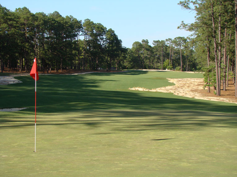 As seen from behind, the green angles toward the player's left edge of the fairway.