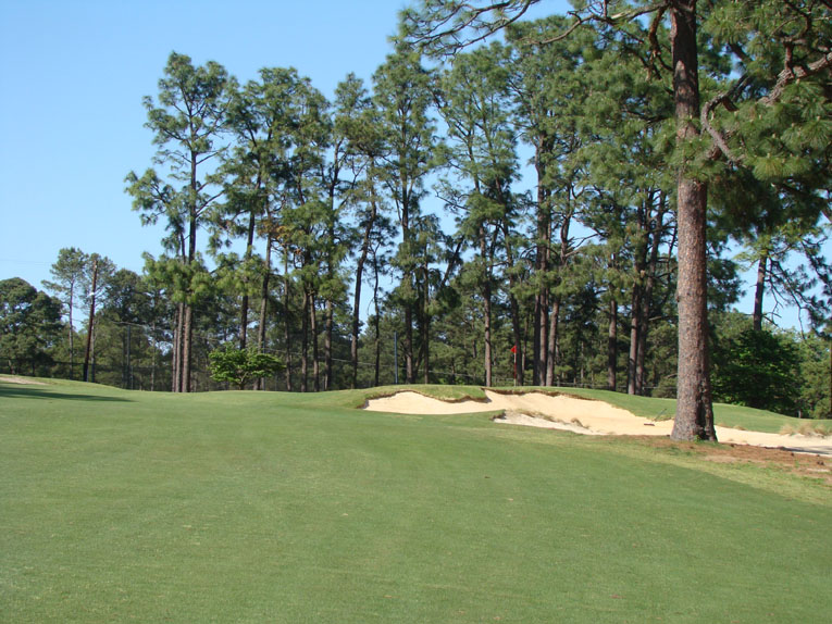 ... a drive to the right that finishes in the fairway can still have tree trouble plus a horrible approach angle to a shallow green.