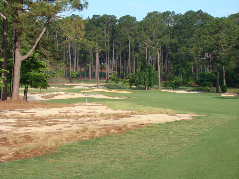A pine tree 90 yards shy of the green on the left is now gone and ...