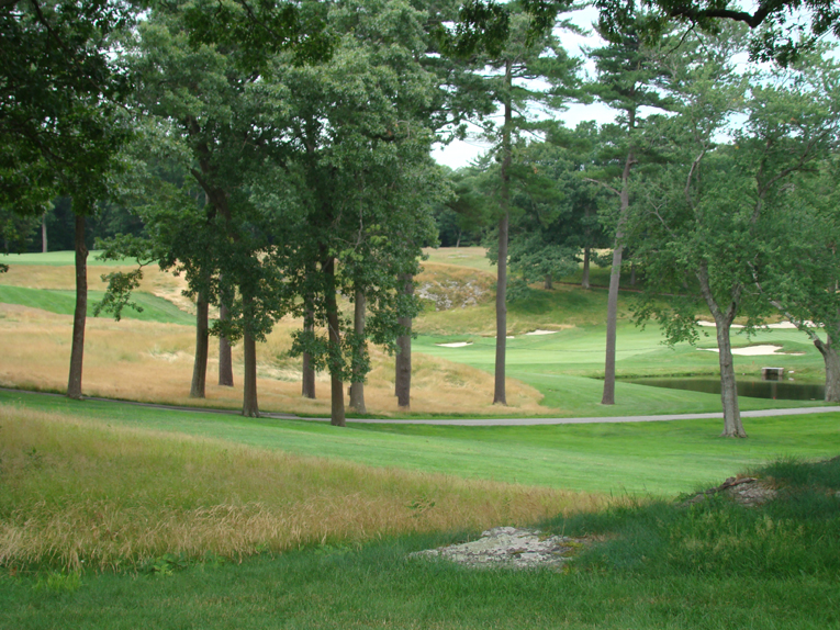 If you have it , flaunt it. The Country's prudent tree policy in recent years has opened up magical vistas across the course, proudly displaying its superb rolling New England topography.