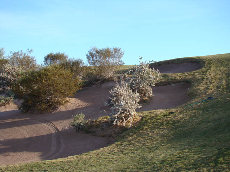 … the course's deepest bunker replete with bur sage, stag thorn Cholla, and creosote and enjoy the perfect angle into the eighteenth green.
