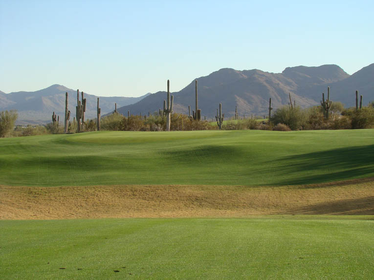 The Red Mountain serves as a distinctive backdrop for the approach at the sixth. It also has sacred significance for the Salt River Pima tribe that owns Coore & Crenshaw's two other desert designs at Talking Stick. Coore is quick to acknowledge a Pinehurst influence for the abundance of short grass surrounding many of the greens.