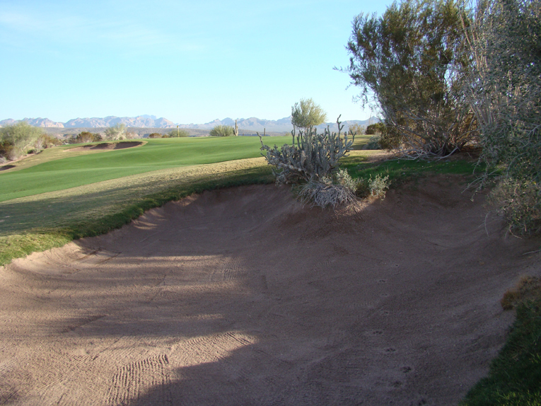 As demonstrated in this bunker to the right of the seventeenth fairway, coyotes are notoriously ill-mannered for raking behind themselves!