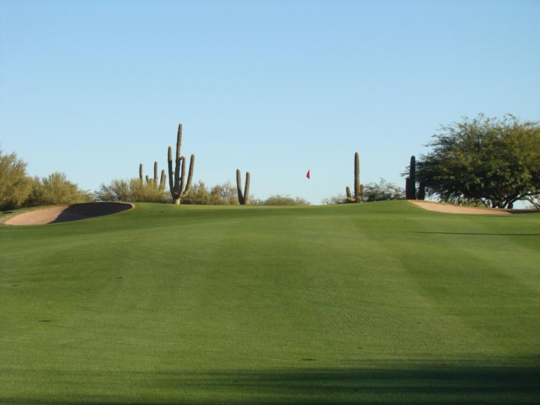 The uphill green sites at Desert Forest often appear simple but are actually complex affairs that feature broad slopes that beguile and frustrate. Lawrence's opening green sets the tone and creates palpable tension. The approach must be deep enough to carry the front slope and avoid being rejected and sent three to ten yards back into the fairway and yet not be too deep, leaving a nervy downhill putt.