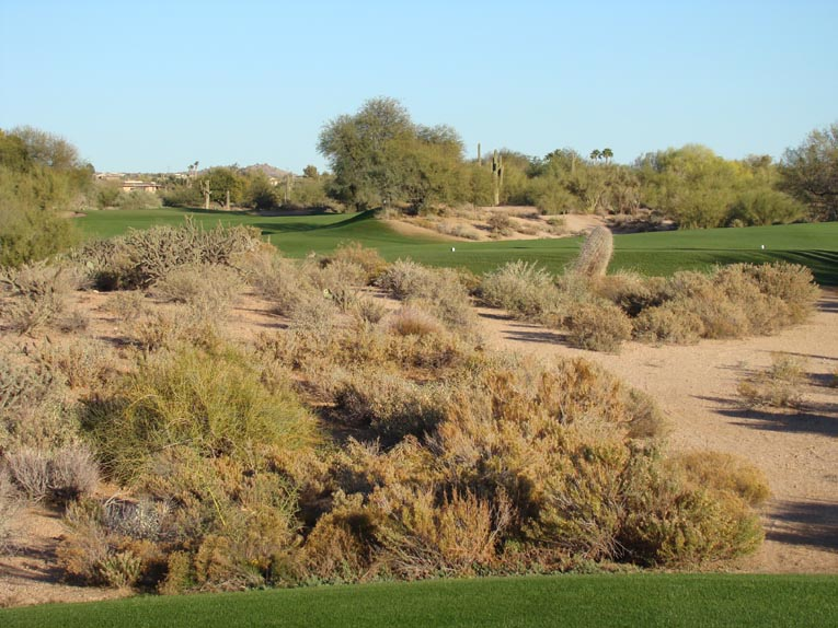 The second at Desert Forest is one of the great holes in the Southwest and beyond. It's great feature is the exposed desert crater that Lawrence employed as a central hazard, bestowing both strategy and beauty.