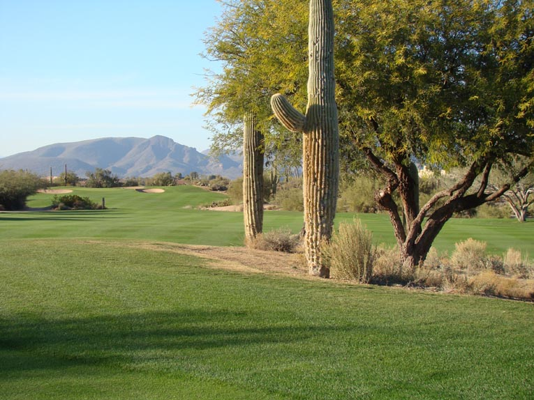 The left and right fairways merge together 260 yards from the tee.