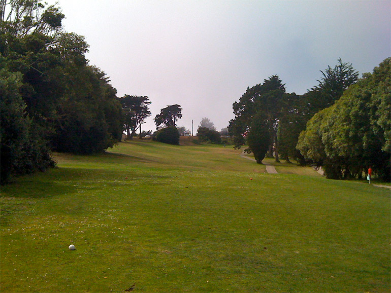The drivable second hole, with the flag barely visible under the branches of the first tree on the right.