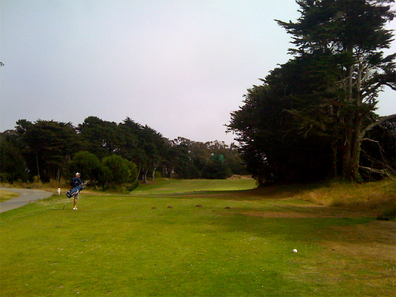 ...but the tee shot itself is a bit strange. The green is in line with the big tree trunk on the right. No joke!