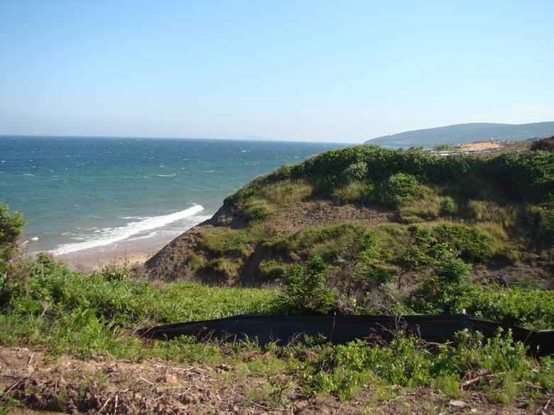 Cliffs10g (2)