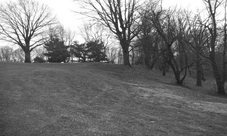 Cobbs Creek #15