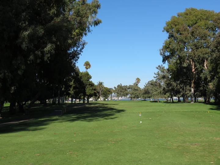 The thick conglomeration of trees just off the left of the twelfth tee box negates any chance at driving the green (located through the trees and just to the left of the yellow stakes in the ground), which in turn hurts the design merit of the hole.