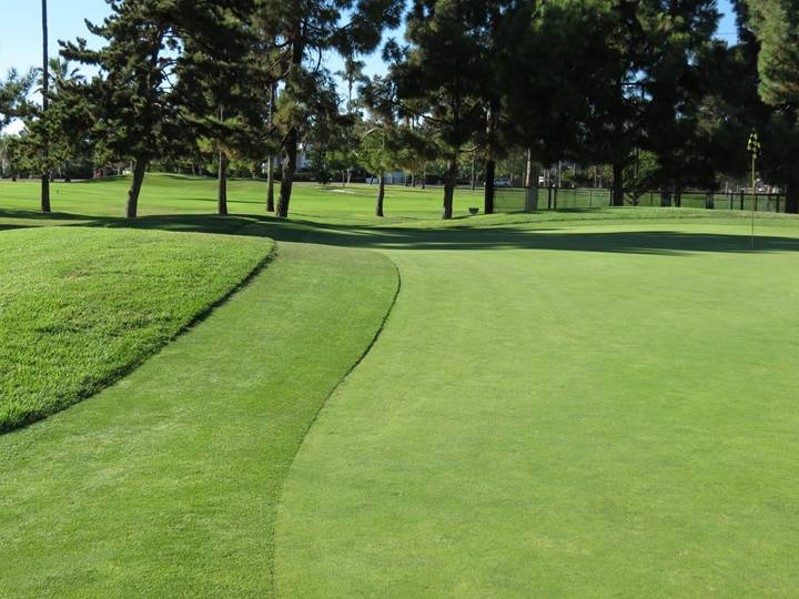 This mound at the front left of the twelfth green helps feed approach shots onto the putting surface. Putting from the front of the green to left hand hole locations can be tricky thanks to this mound, as well.