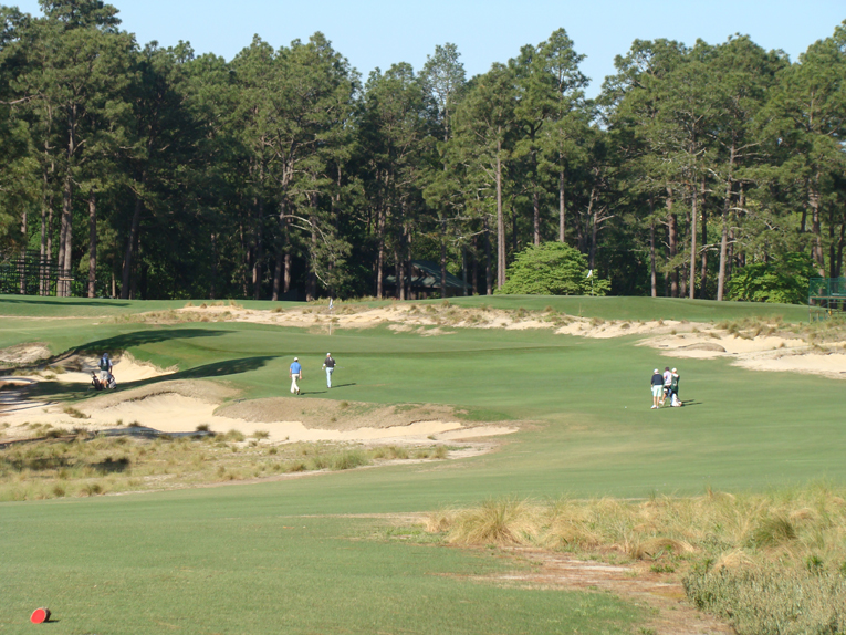 Golf in the Sand Hills of North Carolina is epitomized by the fifth hole at Pinehurst No. 2. The tiger will struggle to get his desired score while the less accomplished golfer can bumble along the wide fairway without fear of losing a ball.