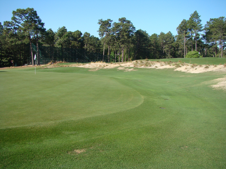 Shots played long and right of the fifth green leave contestants with a chance of recovery but only with a deft chips and putts. This area right of the green should be considered the golfer's friend.