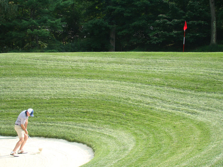 Numerous pot bunkers would fit inside the mammoth bunker front left of the 7,200 square foot green. Not to harp on it, but Whippoorwill represents its own brand of bold golf, even within the Macdonald/Raynor/Banks family of courses. Remember: this course was built in the age of hickory golf. Imagine extracting your ball from this crater with a niblick (a.k.a. nine iron)! Banks would undoubtedly think that we are all wimps, perhaps rightly so.