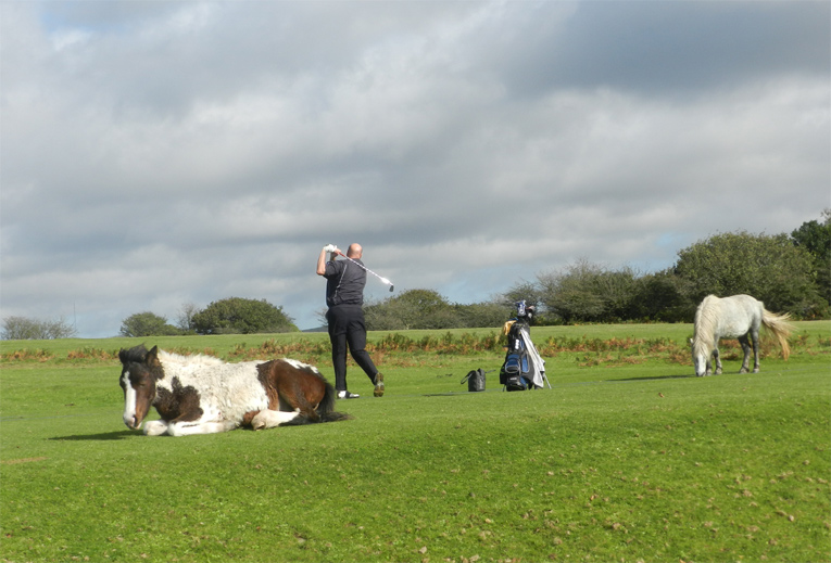 Golf can take you to all sorts of neat spots if you let, including the range at Yelverton.